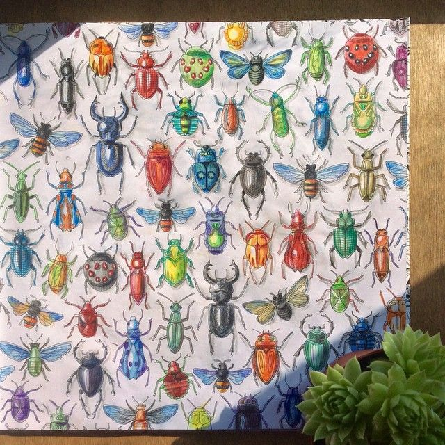 Coloring Ideas Beetles