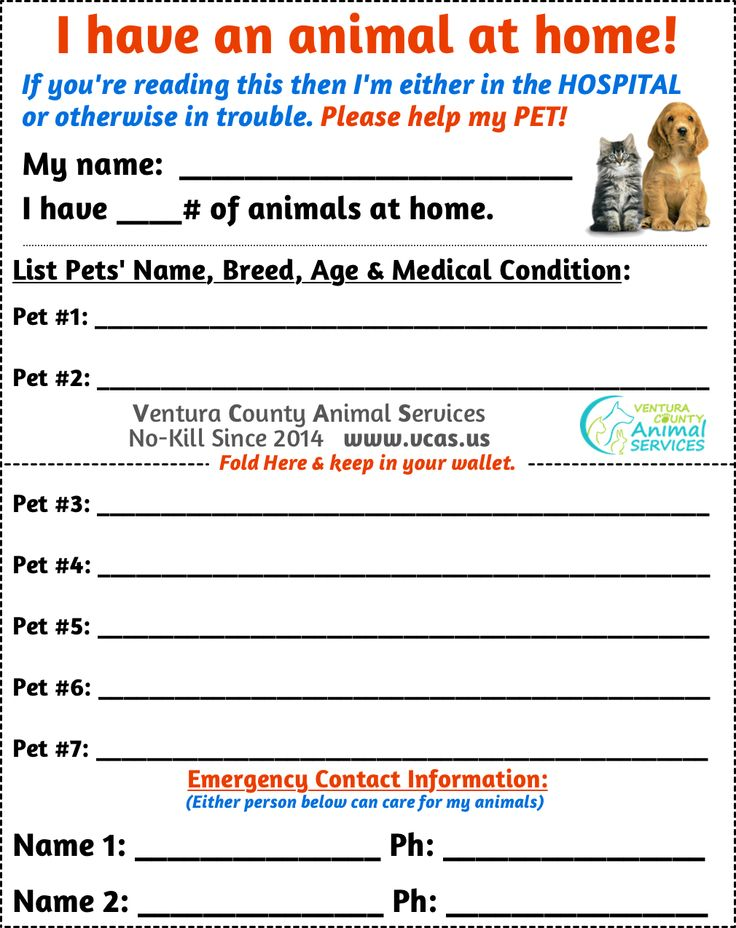 Pet Emergency Card Pet Emergency Card Pet Emergency