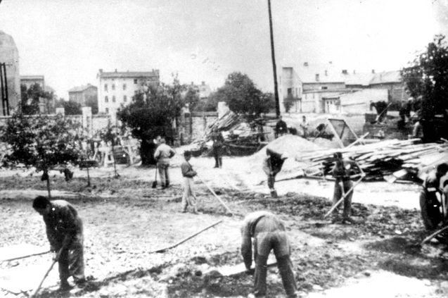 Auschwitz  Poland  Con...