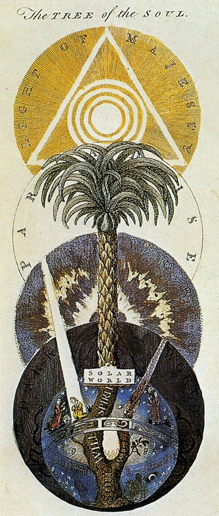 ☤alquimia - D. A, Freher, The Tree of the Soul, in Works of J. Behmen, ed. Law, 1764 / Sacred Geometry <3