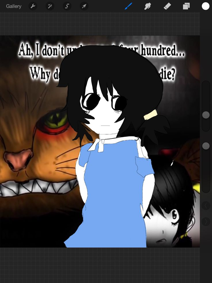 This drawing is based off of Jani, a girl with schizophrenia, people have raised awareness for her. This is drawing is also based off if the song Calalini, dedicated to Jani. ~Backround Not Mine~