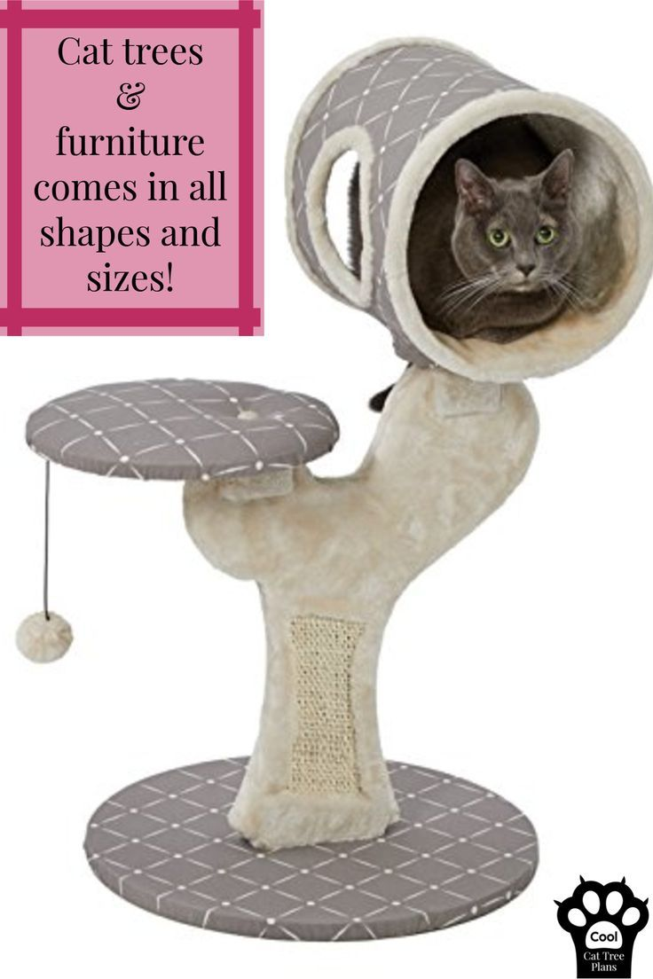 cool cat tree furniture cat trees furniture comes in all shapes and sizes cool trees diy furniture pet accessories pinterest