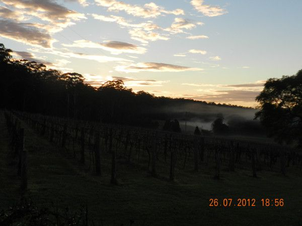 The sun is about to shine on us at Bago Vineyards 27/7/2012