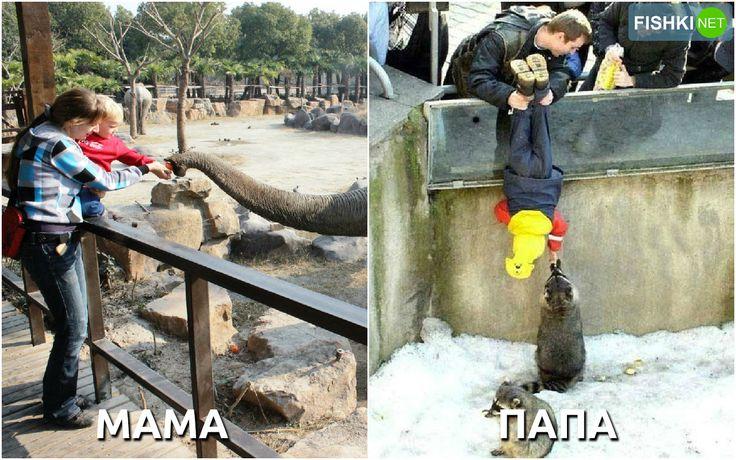 Родители привели ребёнка в зоопарк.