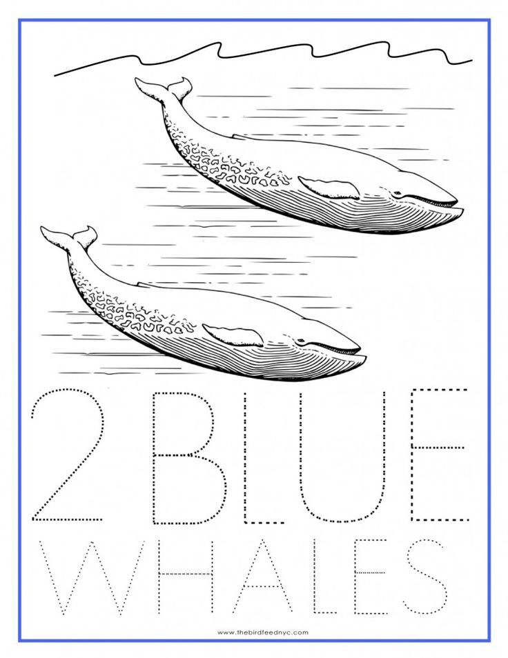 Numbers Coloring Sheet 2 Blue Whales in 2020 Coloring