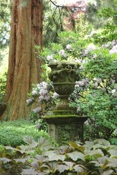 moss covered urn
