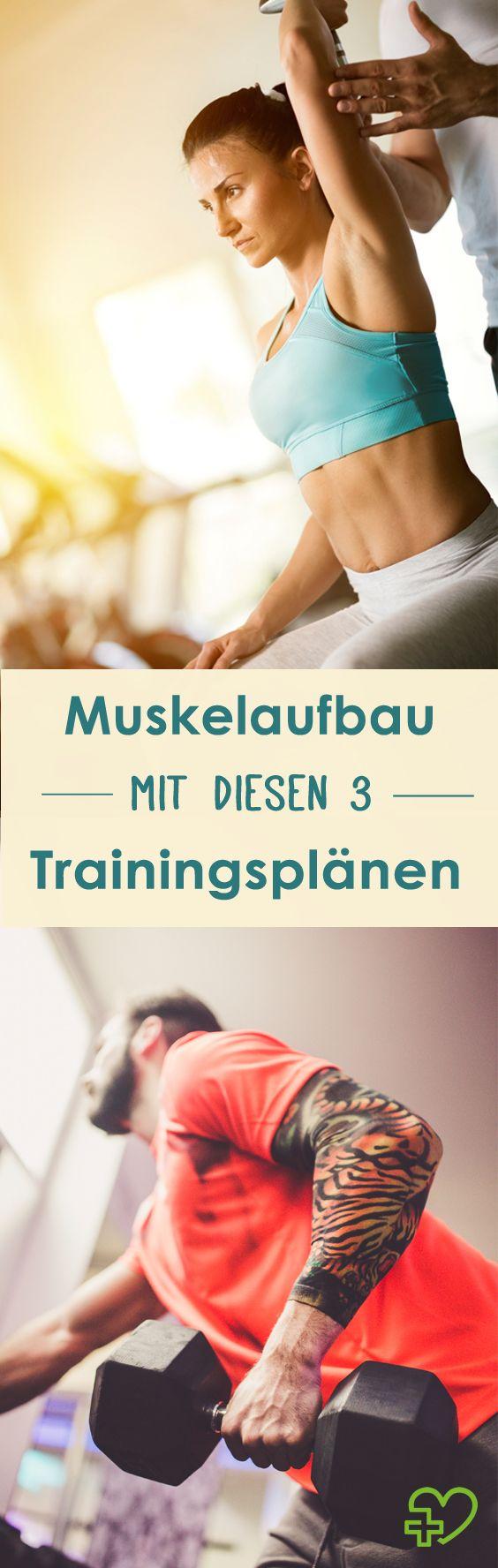 3 Trainingspläne für einen gesunden Muskelaufbau! (Bildquelle: istock)