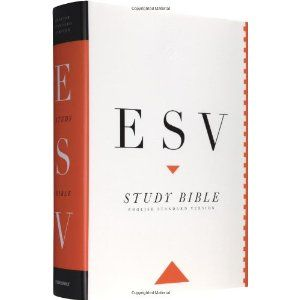 This Bible is similar to the ESV Student Study Bible but includes more in-depth notes and commentary. The ESV Study Bible (Hardcover) http://www.amazon.com/dp/1433502410/?tag=dismp4pla-20