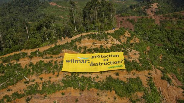 """Message to Wilmar brands in Jambi"""" plantation. They launder products – palm oil from forest destruction – onto the global market and into our homes."""