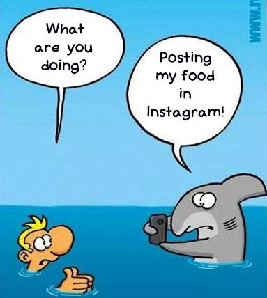 Shark cartoon, found this on pinterest in german, translated for you!
