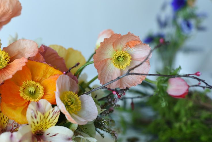 poppies, alstromeria, anemone and branches for a colourful winter wedding