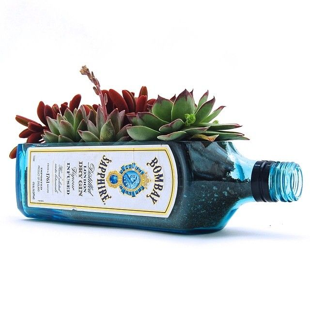 Bombay® Sapphire LongCut Liquor Bottle Planter Pot This beautiful hand-cut planter pot is made from a recycled liquor bottle. Each bottle is cut, theedges are sandedto create a beautiful container for any of your plant life. *Plants, Stones and Soil areNOTincluded.
