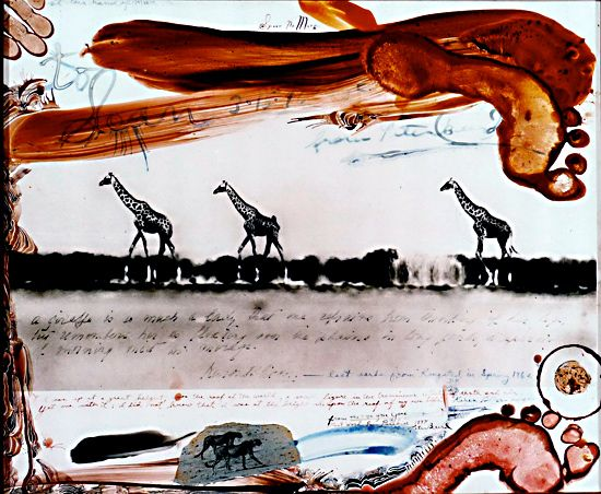 peter beard - artist who uses photography, ink, blood to create his images...click for more info