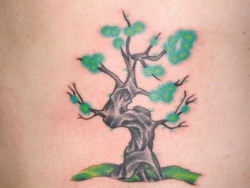 Cherry Tree Tattoo Pictures