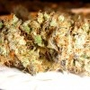 Vanilla Kush Review | Medical Marijuana Strains
