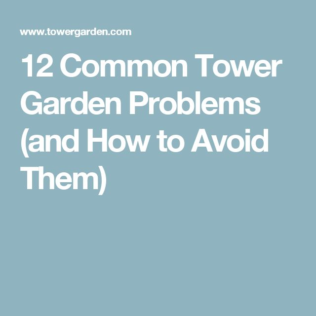 12 Common Tower Garden Problems (and How to Avoid Them)