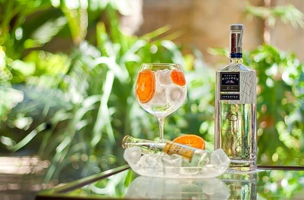 Gin Tonic especialmente preparado en #Hoteles Servigroup // Gin & Tonic prepared in #Spain #Hotels