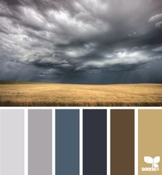 Though pretty dark, these could be a way to bring the prairie to the home for Dad grey color palette for home - Google Search