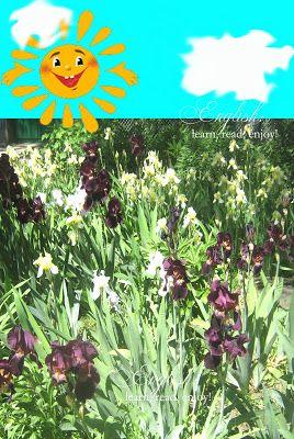 English:learn,read,enjoy!: Read and Enjoy:Robert Louis Stevenson, Summer Sun