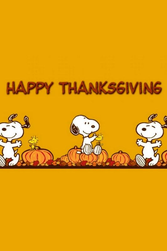Happy Thanksgiving! Welcome to my boards! Browse, pin as much as you want--no pin limits here. Check out my fall boards