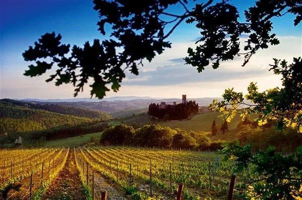 Descubre la Toscana: Descubre el Valle de Chianti