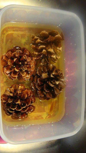 This pinecone idea is stunning!