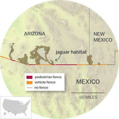 Map of jaguar habitat in Arizona and New Mexico along the US Mexico border wall