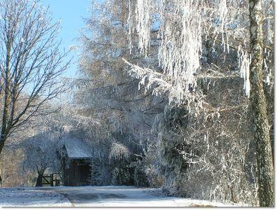 Fresh Winterspaziergang Wohnen u Garten Fotomunity Lilly