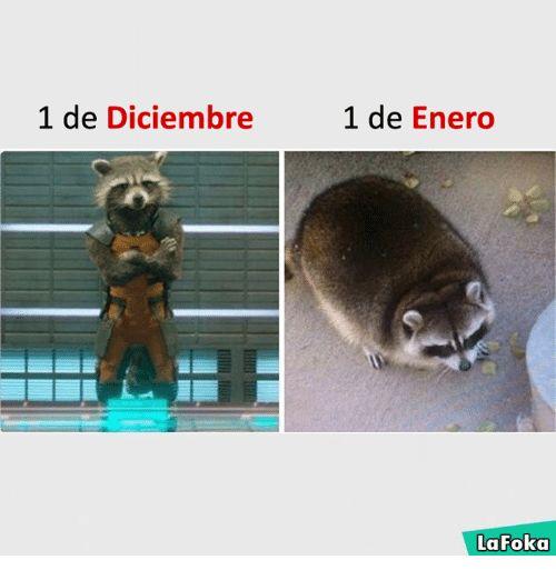 Resultado de imagen para memes la foka 2017