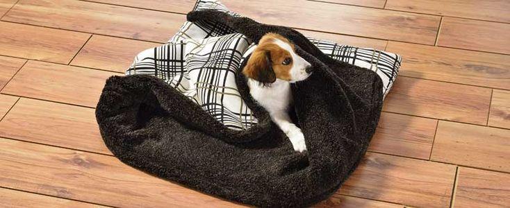 Dog's Finest imitiert mit seinem neu entwickelten Hundeschlafsack das Gefühl einer sicheren Höhle. Bild: Dog´s Finest