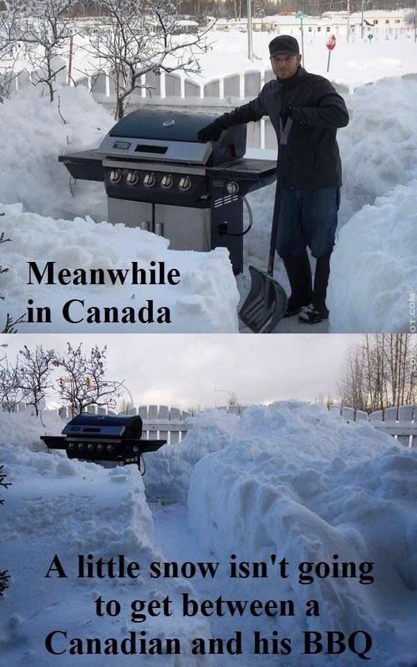 I really like these footage that say 'solely in 'Canada' I am Canadian and I…