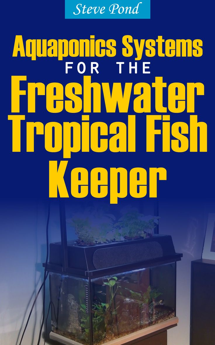 Bl system how many fish in a 55 aquaponics tank info - Provides Diy Instructions For Retrofitting A Home Tropical Fish Tank To Exploit The Benefits Of Aquaponics