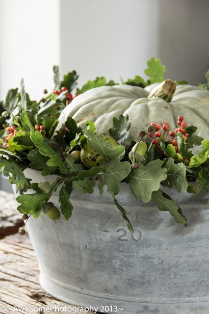 galvanized tub, oak leaves, acorns, berries, etc.