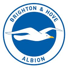 Brighton & Hove Albion crest.