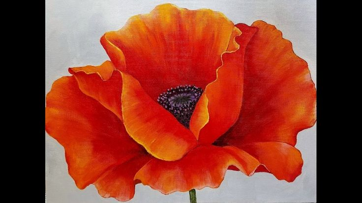 Red Poppy Acrylic Painting Georgia O Keeffe Inspired