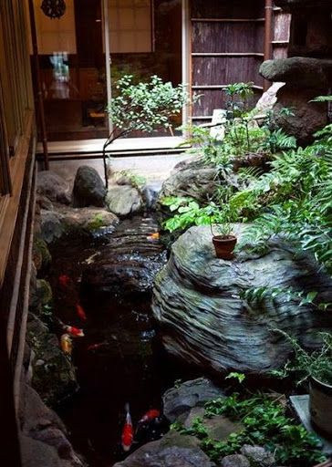 Backyard Koi Ponds And Gardens