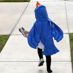 Step-by-step instructions for making a hooded cape bird costume.