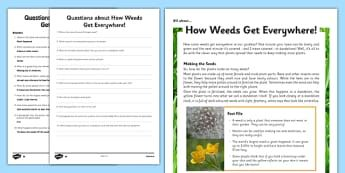 Year 3-4 Seeds and Weeds Differentiated Reading Comprehension Activity
