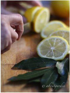 Ingredienti Sciroppo naturale per il raffreddore e mal di gola