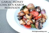 Honey-Garlic Chicken Kabob Marinade | Thriving Home