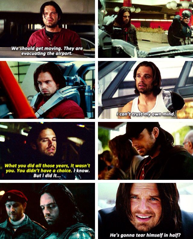 1000 Images About Bucky On Pinterest-5886