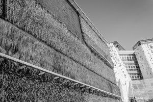Details – Expo 2015 – Marco Iebba