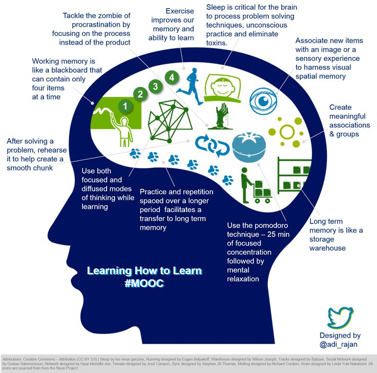 Learning how to learn | An infographic