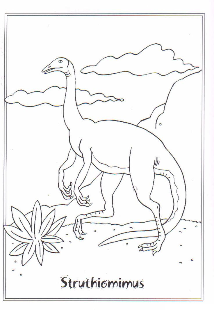 coloring page Dinosaurs 2 - Struthiomimis
