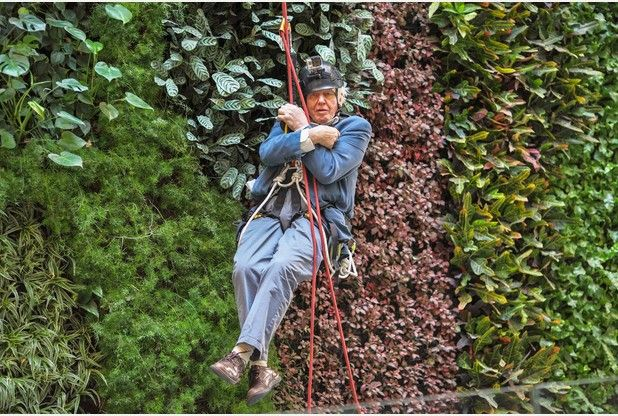He can fly! Sir David Attenborough abseils 50ft to launch new Cambridge conservation project