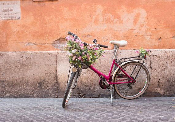 Italy Photography, Pink Bike and Flower Basket, Bike Parked in Rome, Roman Holiday, weekend in Rome, Garden, nature, neutral decor, Bike Art