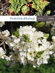 I wrote an article for this issue of Praktisk Økologi about urbangardening.
