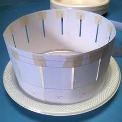 Make a zoetrope (zoopraxiscope)