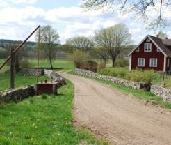 Hiking/biking around Ivö