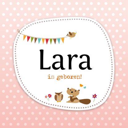 Geboortekaartje, ontwerp door Hanneke De Wit  www.kaartje2go.nl